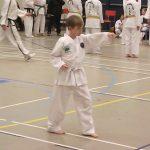 Taekwondo Pattern